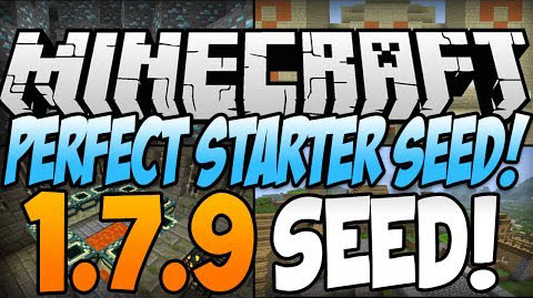 Perfect-Starter-Seed.jpg