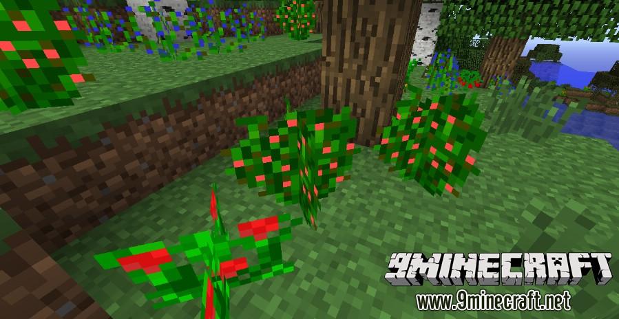 Plants-Plus-Mod-1.jpg