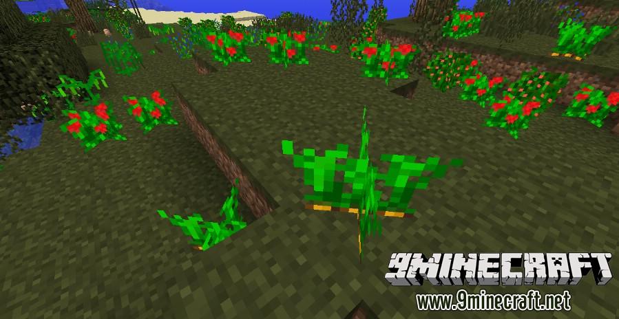 Plants-Plus-Mod-4.jpg