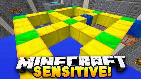 Sensitive-Puzzle-Map.jpg