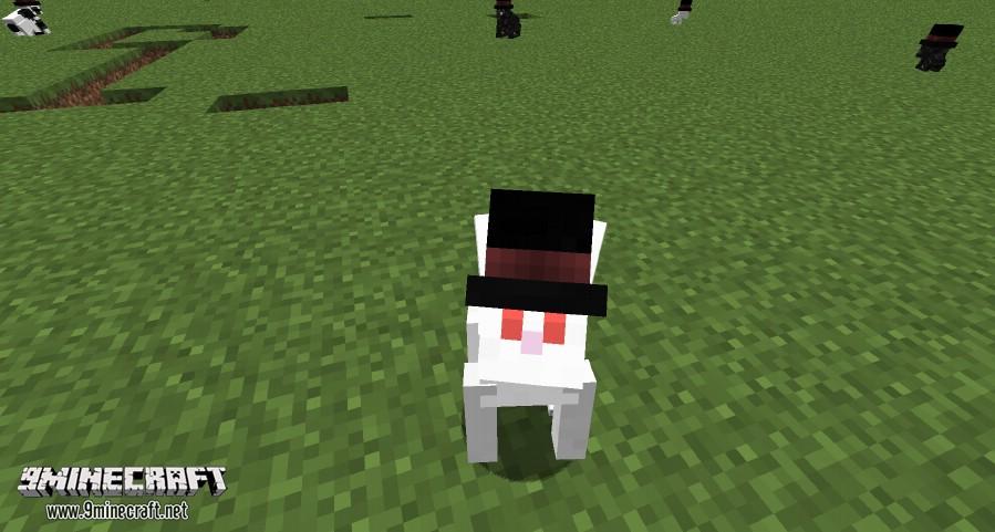 Better-Than-Bunnies-Mod-1.jpg