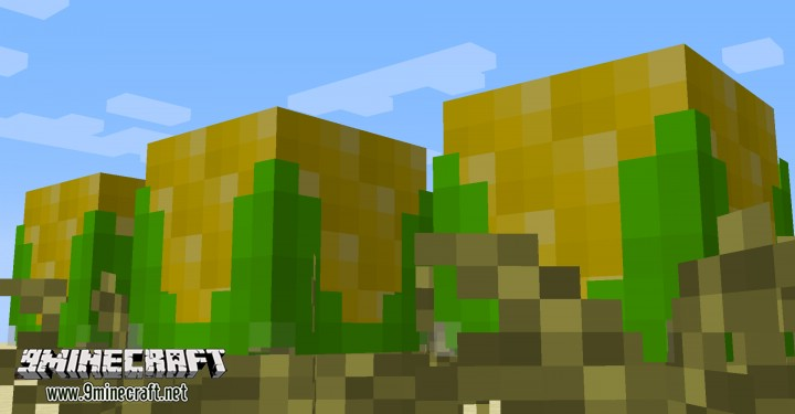 Corn-and-Popcorn-Command-Block-2.jpg