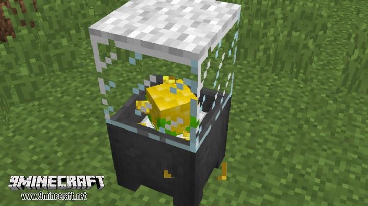 Corn-and-Popcorn-Command-Block-6.jpg