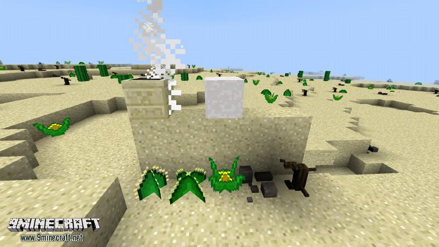 Living-Deserts-Mod-5.jpg